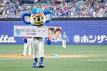 山田裕貴が始球式を務めた